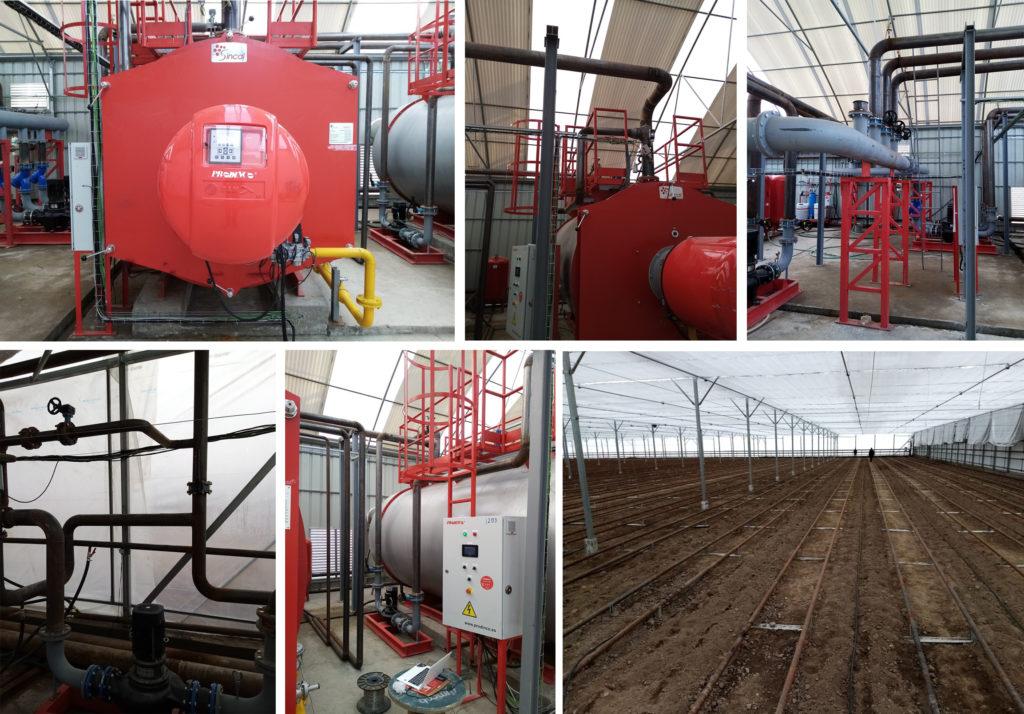Puesta en marcha  de una instalacion de calefacción en un invernadero en Uzbekistan | Soluciones de Combustion
