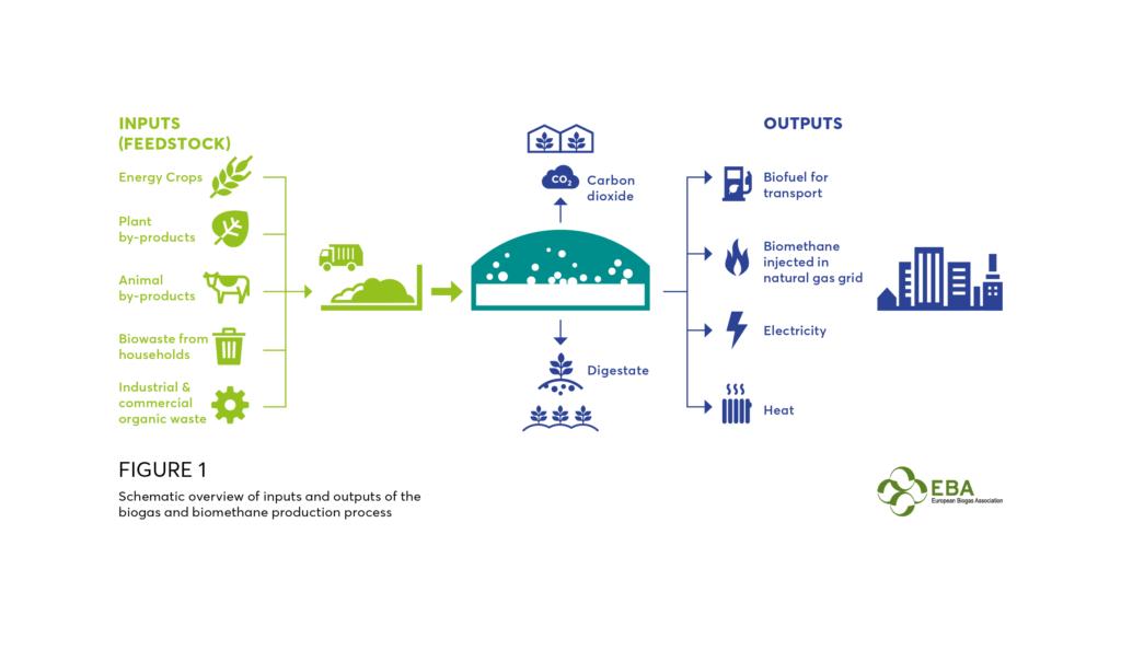 Proceso de Produccion de Biogas - EBA - Soluciones Integrales de Combustion